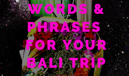 Words And Phrases For Your Bali Trip |www.rtwgirl.com