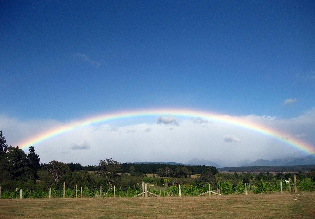 Rainbow Nelson New Zealand   www.rtwgirl.com