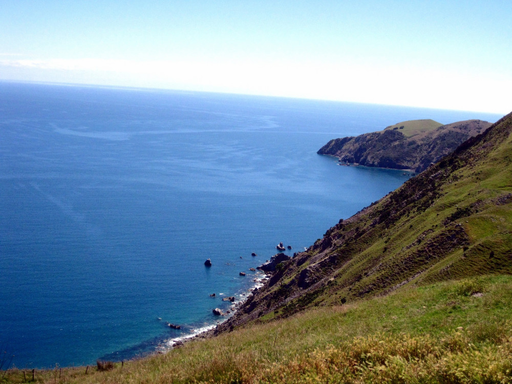 Cable Bay Hike in Nelson New Zealand | www.rtwgirl.com