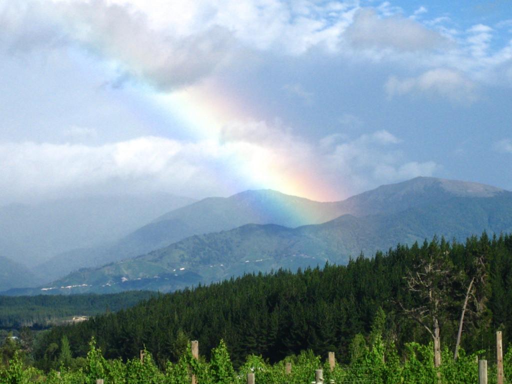 Rainbow Nelson New Zealand | www.rtwgirl.com