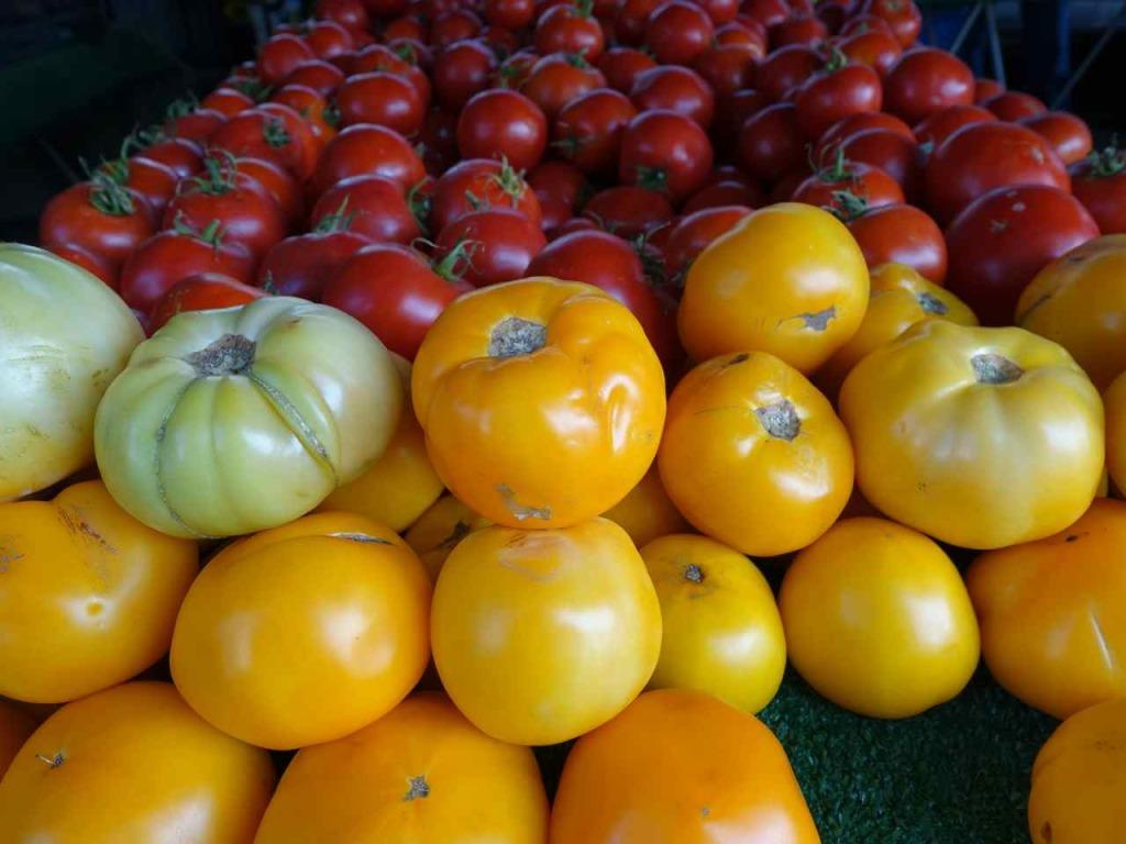 Helen Albert West Hollywood Farmers Market