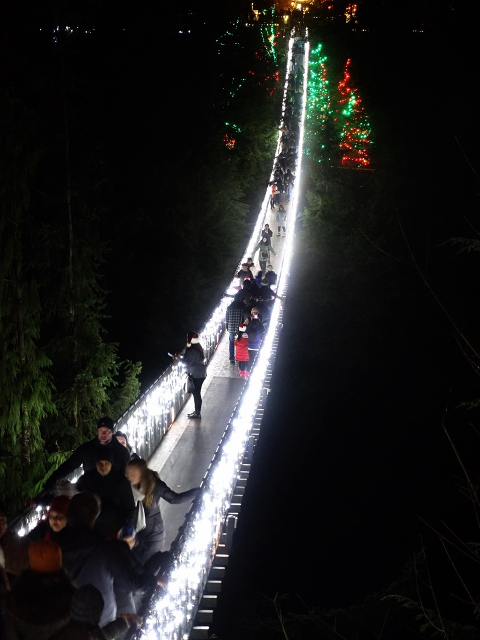 Canyon Lights At Capilano Suspension Bridge With My Family
