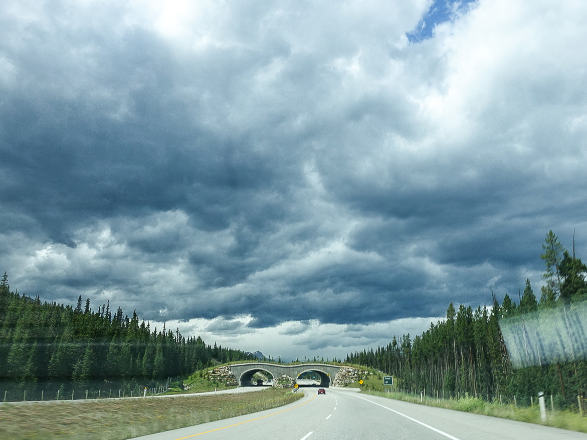 Driving to Moraine Lake | www.rtwgirl.com