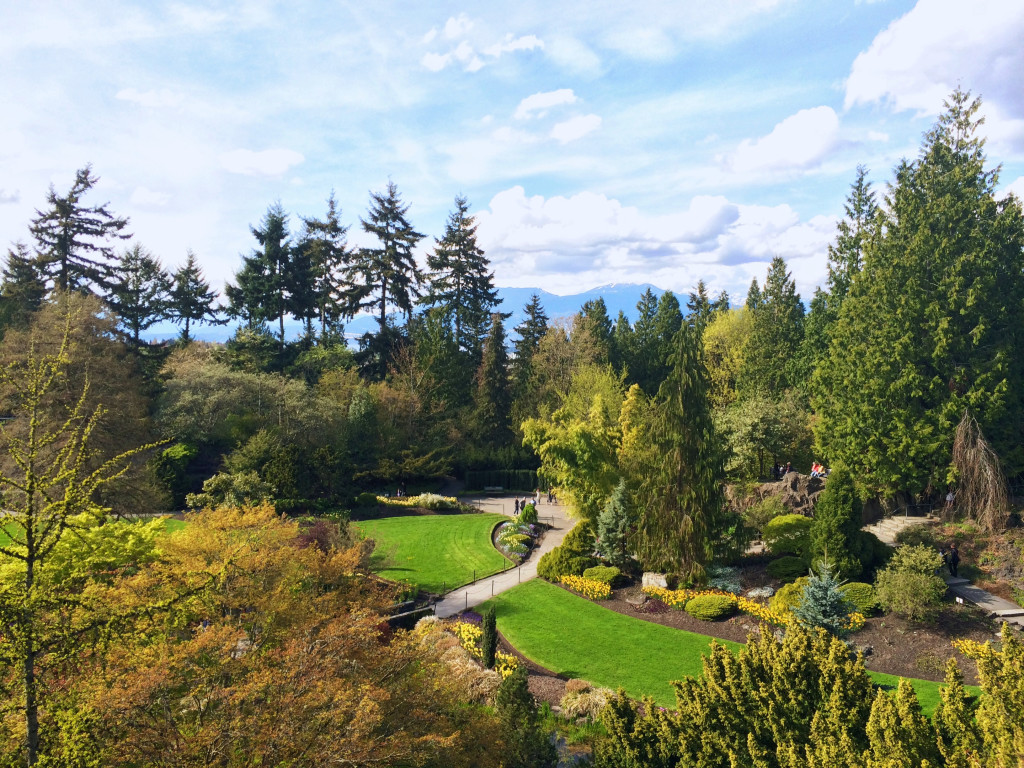 Queen Elizabeth Park - Best Things To Do On A Budget In Vancouver