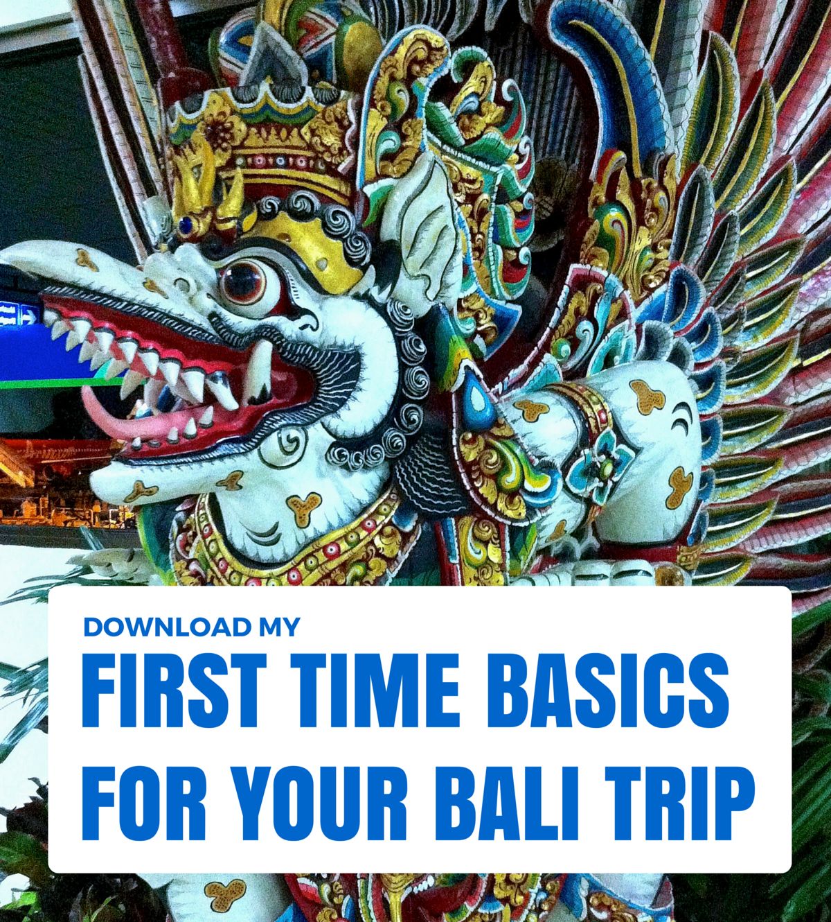 First Time Basics Bali Ebook