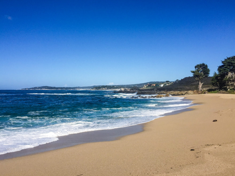 Monastery Beach in Carmel By The Sea