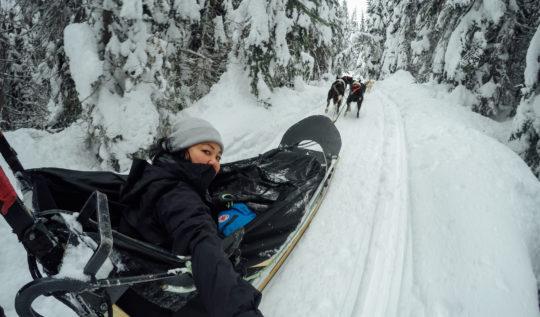 Mountain Man Adventures Dog Sledding