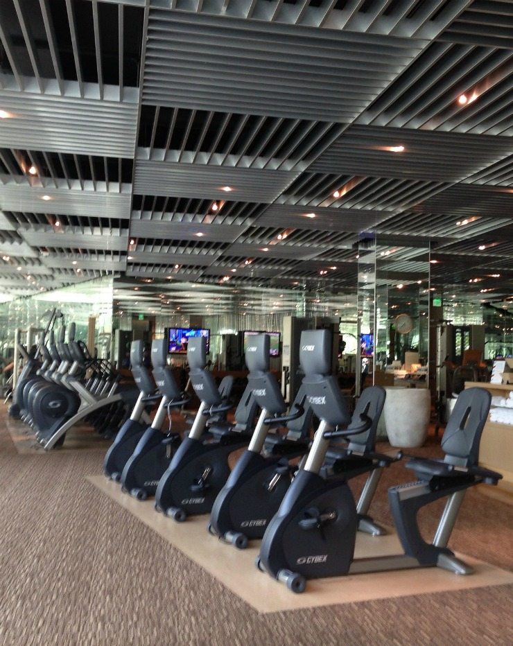 Travel Fitness - Aria Las Vegas Hotel Gym