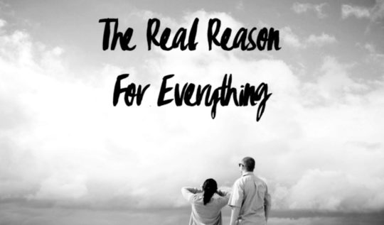 The Real Reason For Everything