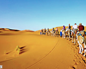 Group Travel: Tips On How To Survive A Trip With Others   www.rtwgirl.com